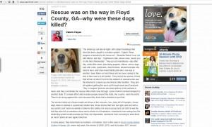 Floyd ASPCA irony
