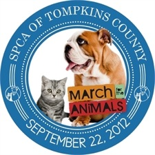 TCSPCA March for the Animals 2012