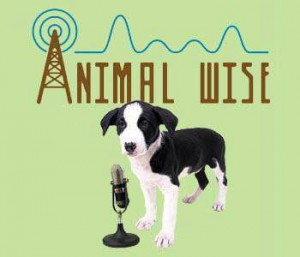 Animal Wise Radio